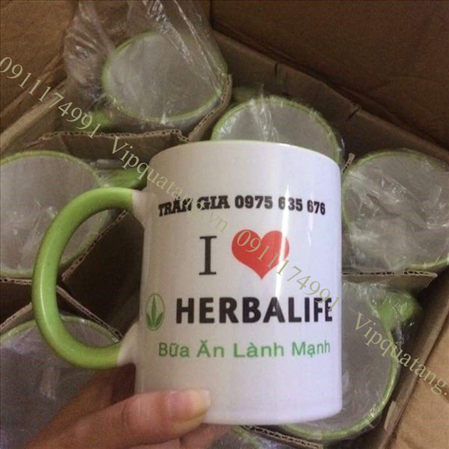 in Cốc sứ - in Ly sứ - quai men màu - in logo herbalife MS 14361